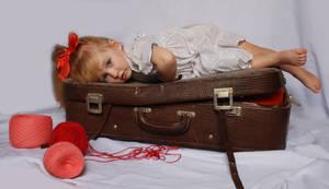 The suitcase_12 by anastasiya-landa