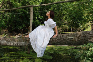 In the mysterious forest_2 by anastasiya-landa