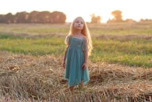 In the field_14 by anastasiya-landa