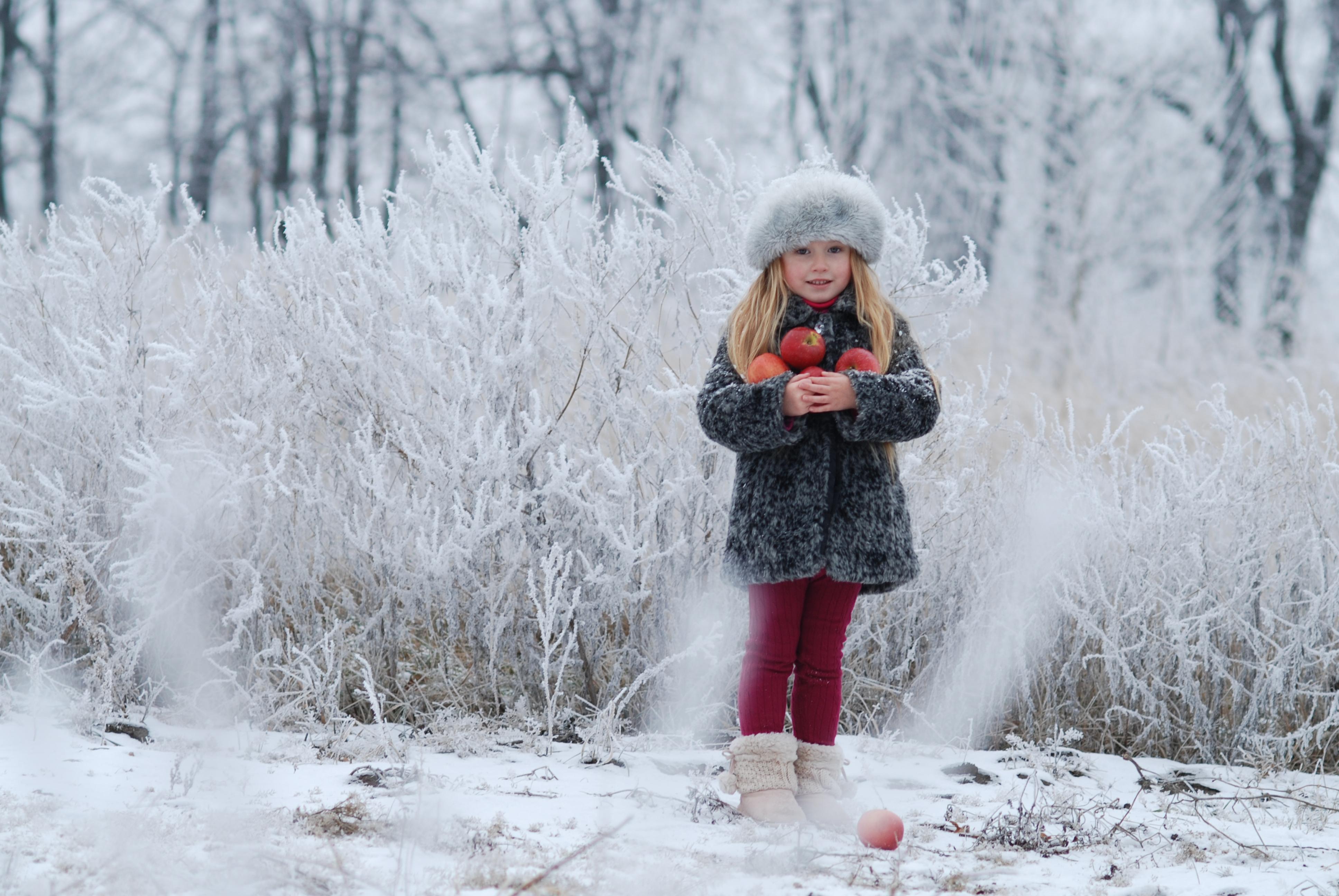 Frosty morning. winter_1 by anastasiya-landa