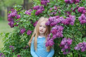 lilac Bush_2 by anastasiya-landa