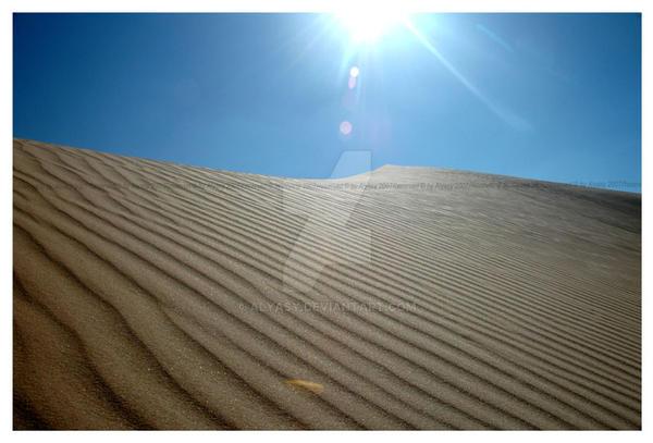Desert treasure by alyasy