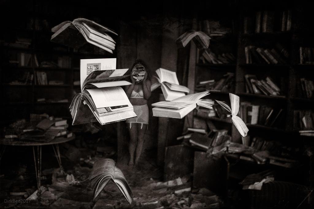 flying books by DirkBee