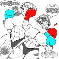 [Commission] Private sparring 04 by HellBridge