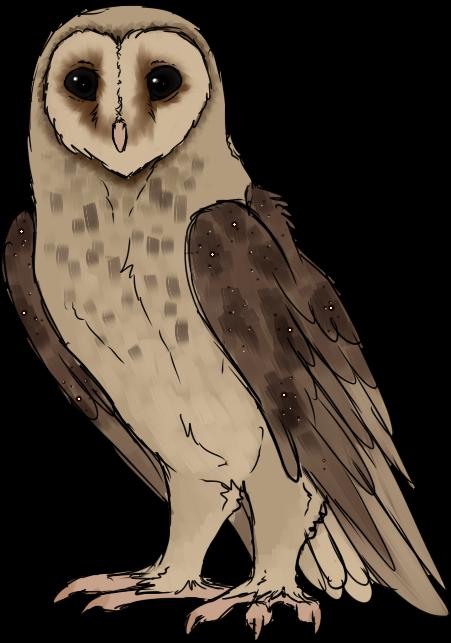 Tyto Alba by mute-owl