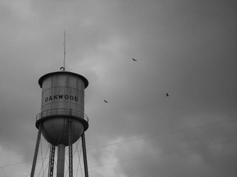 Oakwood Water Tower
