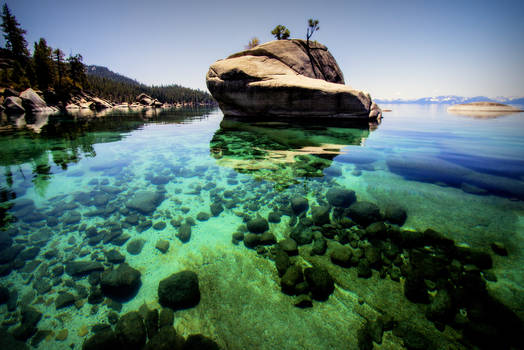 Bonsai Rock at Tahoe
