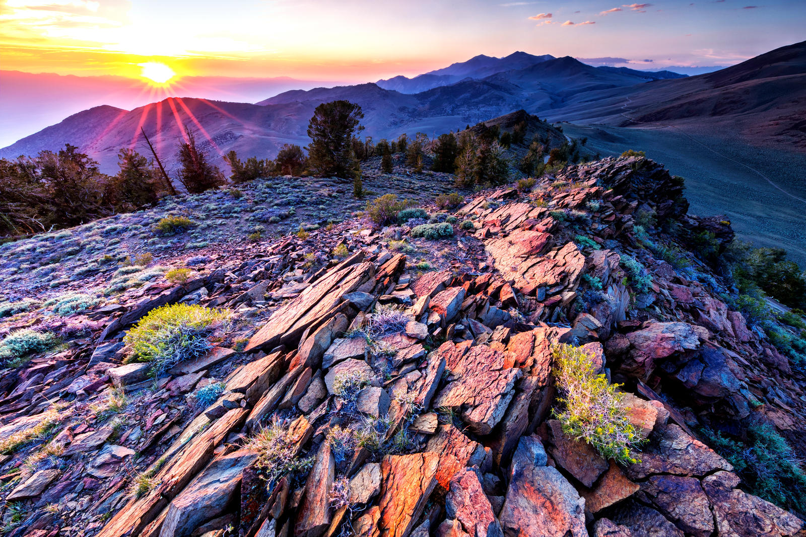 Evening in the White Mountains, California by sellsworth