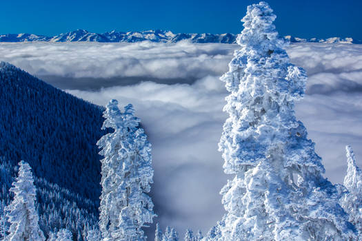 Above the Clouds at Tahoe
