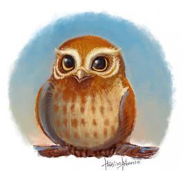 Owl Gylfie