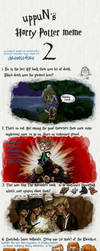 Harry Potter Meme 2 - intense by drewsefske