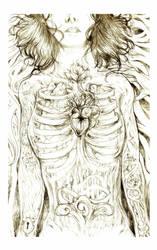 of bodies by alizarin