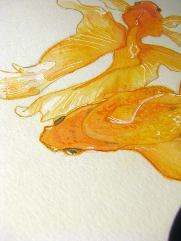 WIP Goldfish by AnniOturnaround
