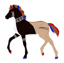 N7672 Padro Foal Design
