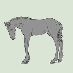 Friesian Foal Lines and Base