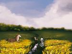 twwm | wildflowers