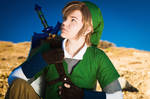 Link - Legend of Zelda Skyward Sword III