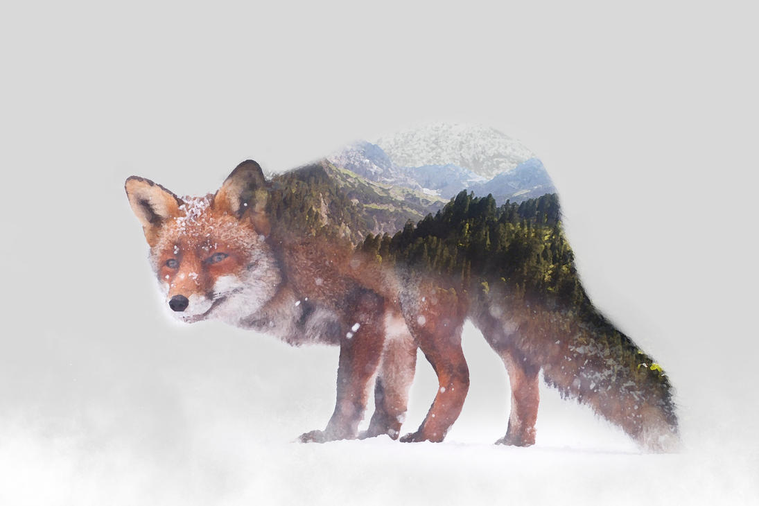-- Double exposure forest -- by 0l-Fox-l0