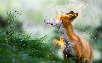 -- Evil fox -- by 0l-Fox-l0