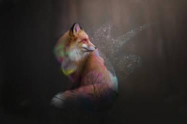 -- Lost -- by 0l-Fox-l0