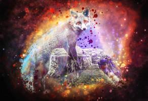 -- Space vulpine -- by 0l-Fox-l0