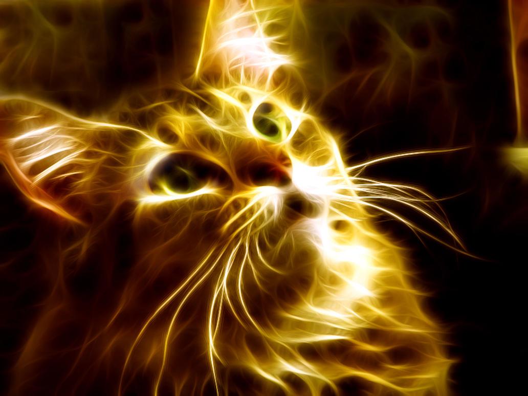 Fire Cat by TazPoltorak