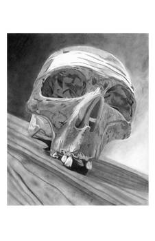 Lonely Skull