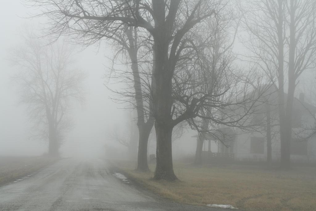 Into the Fog by thirteenthman