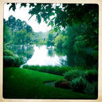 Jimmy Carter Center Pond