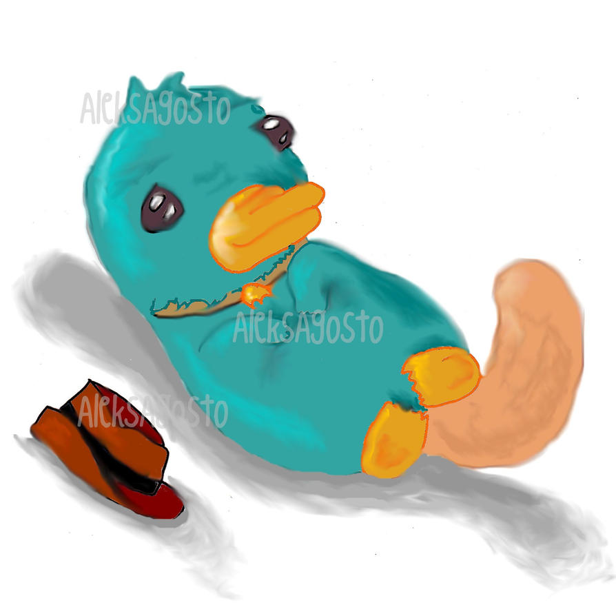 Baby perry the platypus plush