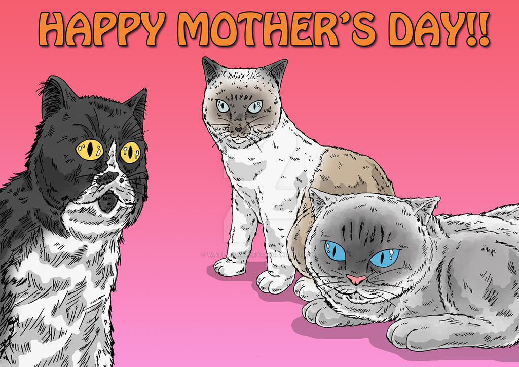 Kitty Cats by WaylonWesley