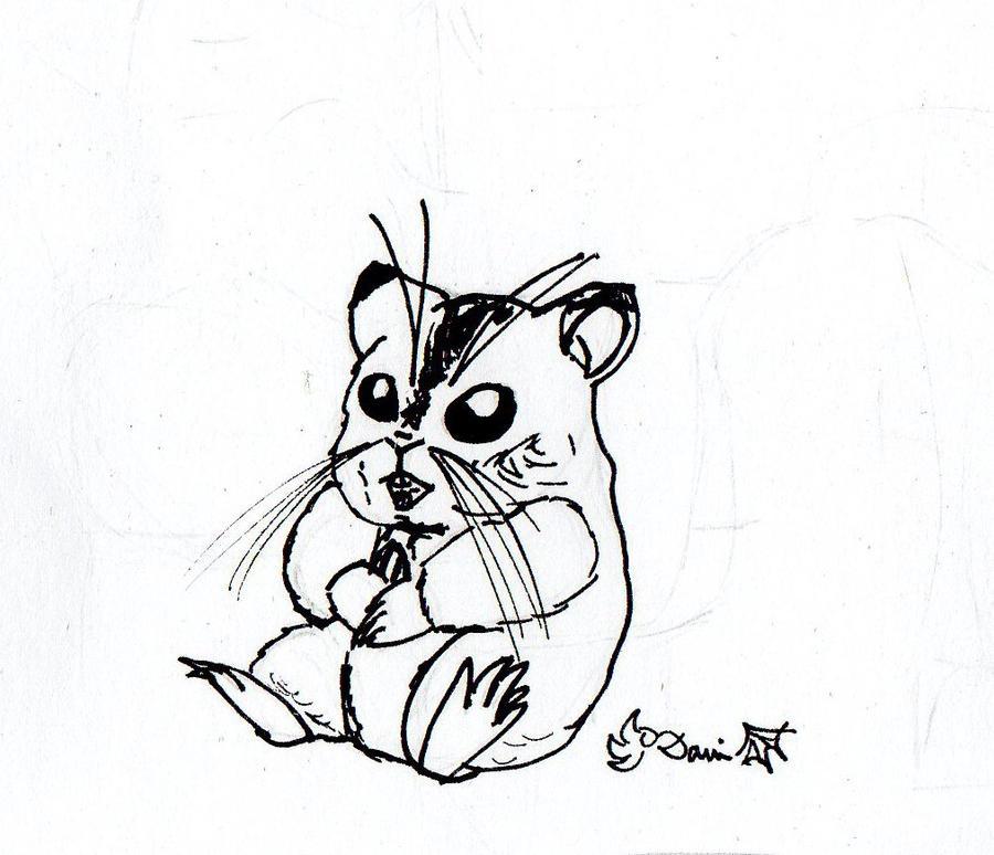 Hamster Sketch by Thai4Viet on DeviantArt