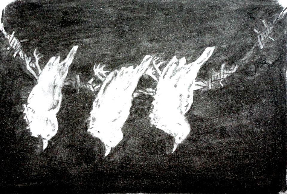 Three little birds by Sarippus