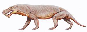 Gorgonops whaitsii