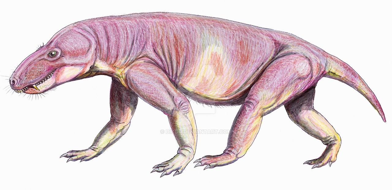 Glanosuchus by DiBgd