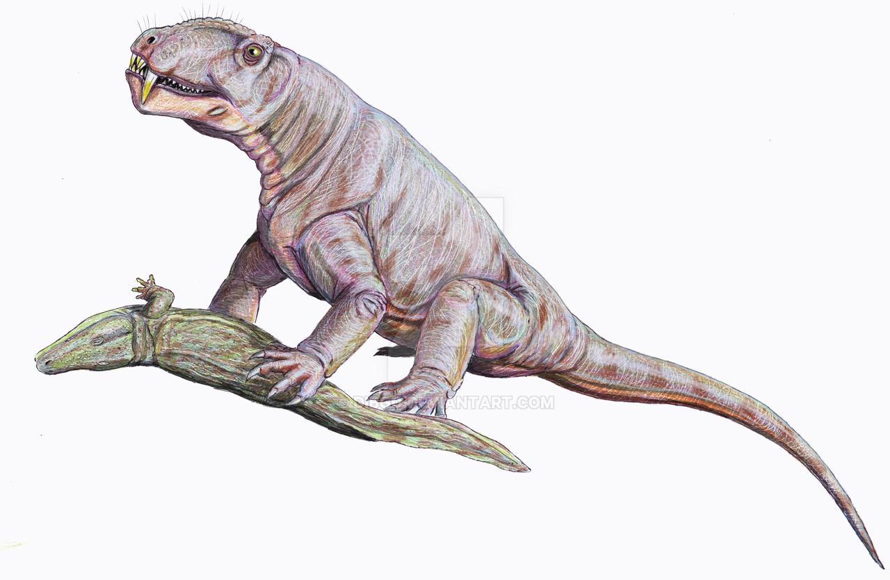 Titanophoneus adamanteus