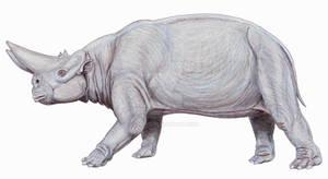 Arsinoitherium zitteli