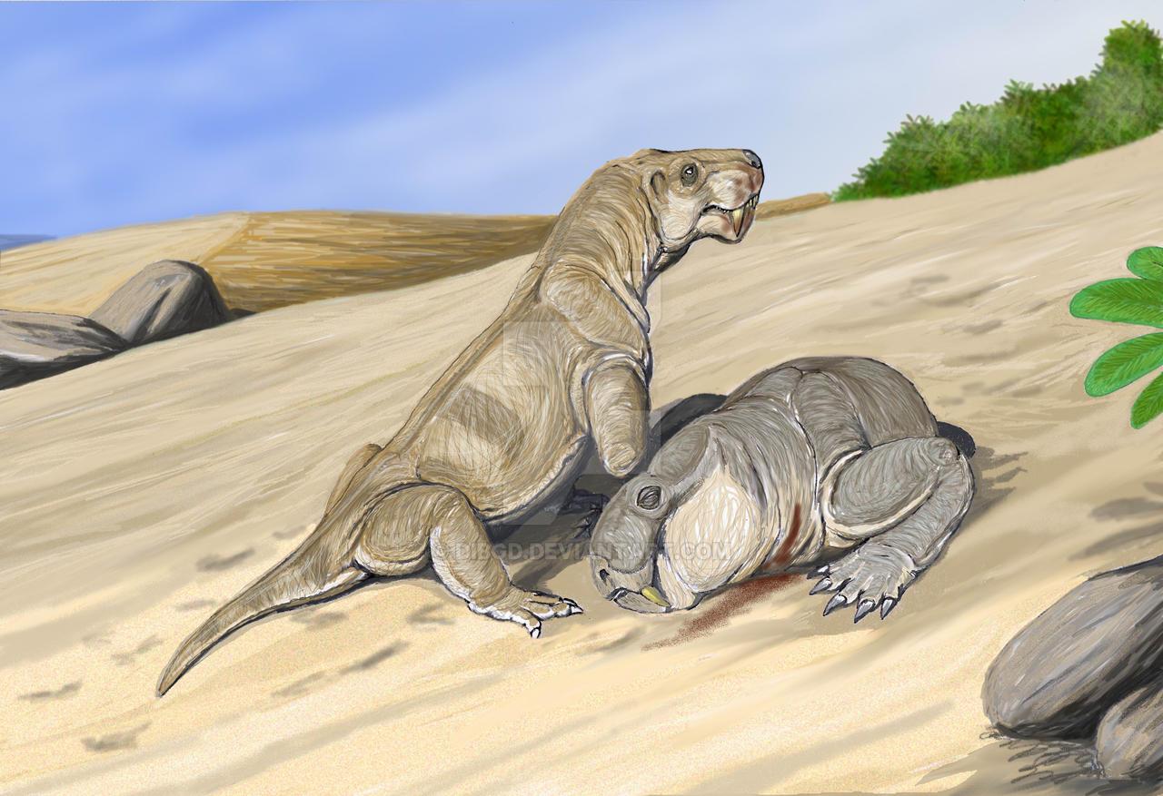 'Broomicephalus'