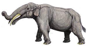 Gnathabelodon thorpei