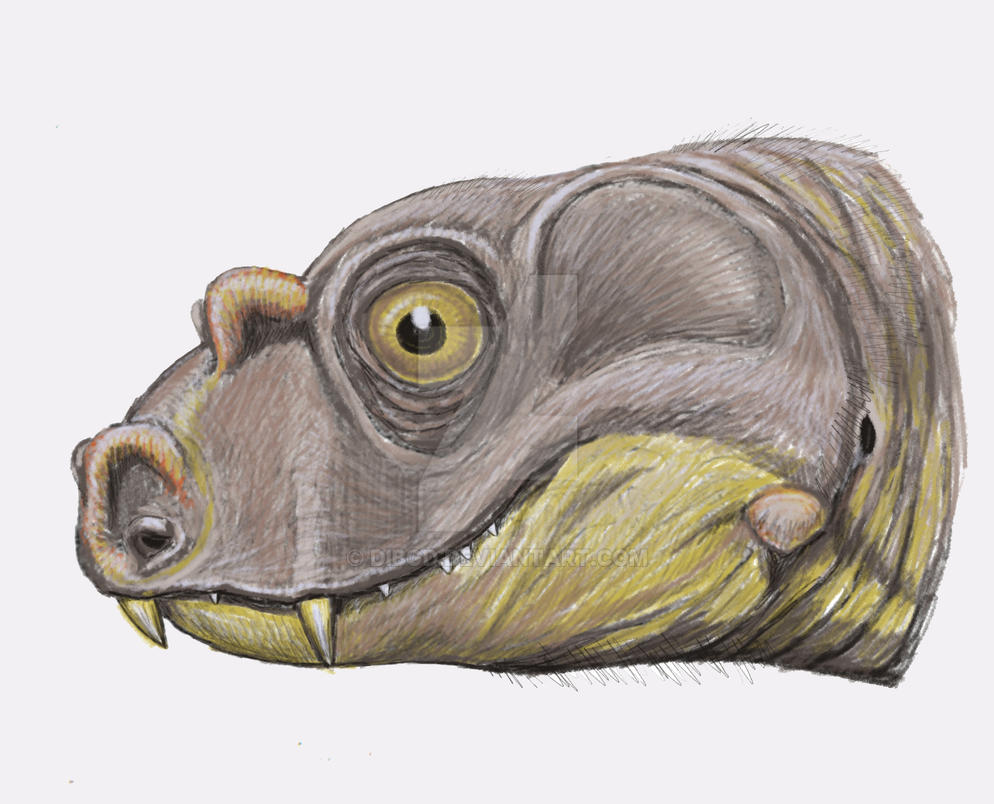 Tetraceratops insignis by DiBgd