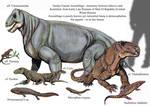Sundyr Faunal Assemblage