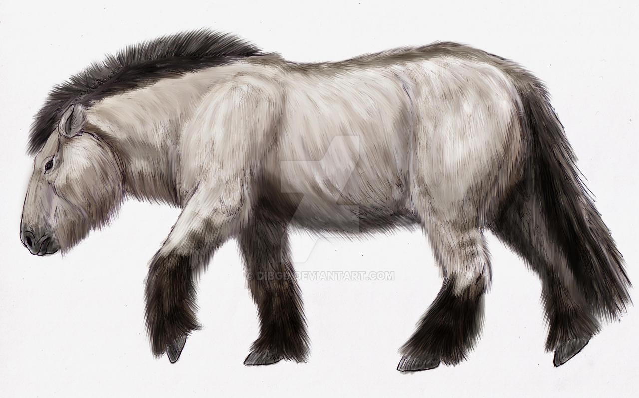 Equus lenensis by DiBgd