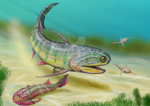 Xylacanthus