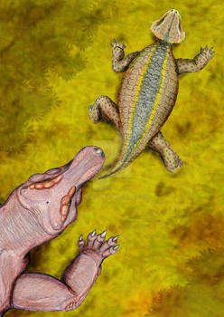 Anthodon and Dinogorgon