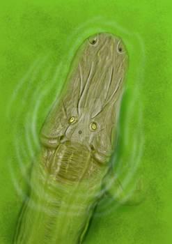 Cherninia megarhina