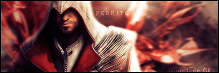 Assassin Creed 2 sig by TheNons3nse
