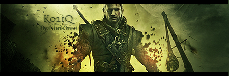 The Witcher 2 sig by TheNons3nse