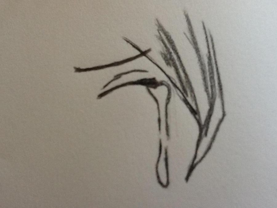 Crying manga eye by EndlessDreamJAM on DeviantArt