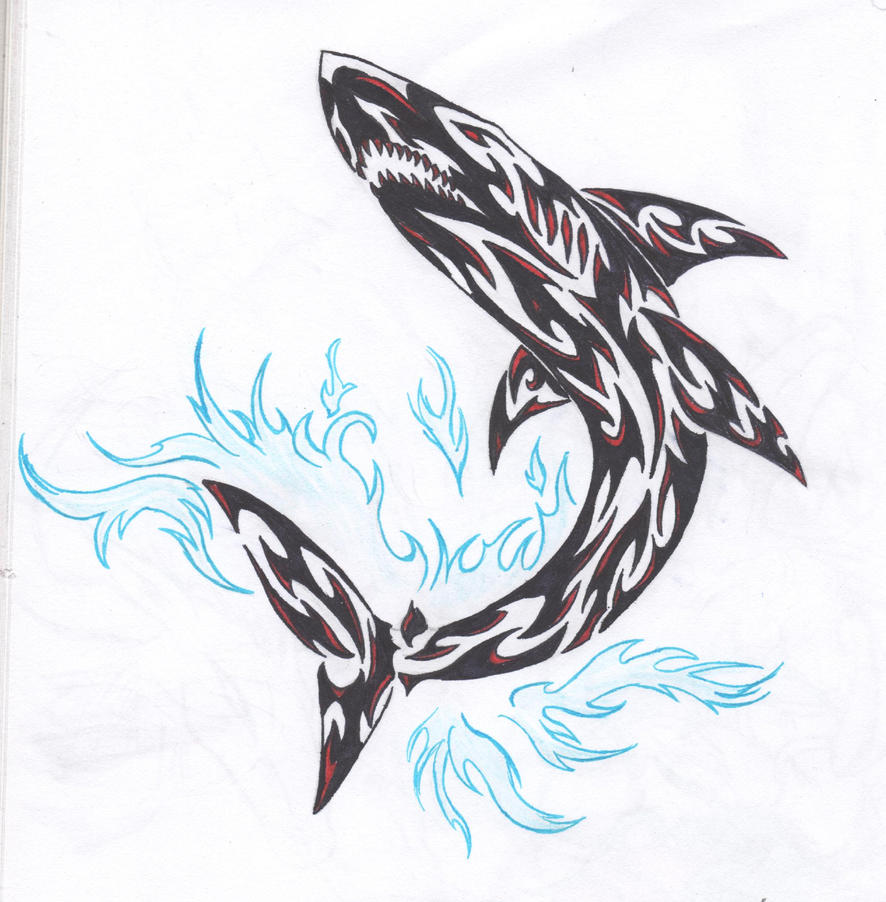 Tribal great white shark - photo#6