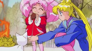 Usagi, ChibiUsa and Artemis